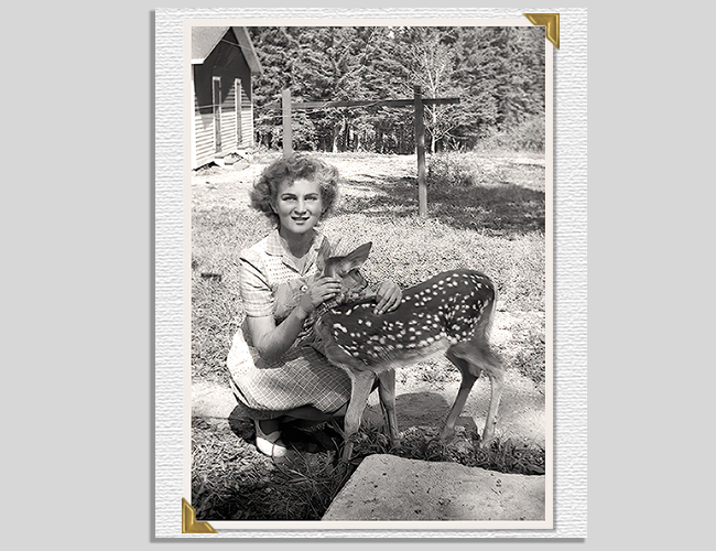 Mom With Fawn Afterr
